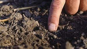 soil moisture testing with fingers (vaderstad.com)