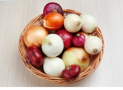 Allium Cepa - Bulb Onions (theworldwidevegetables.weebly.com)