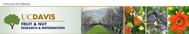 UC Fruit and Nut Research (UC Davis)  http://fruitsandnuts.ucdavis.edu/
