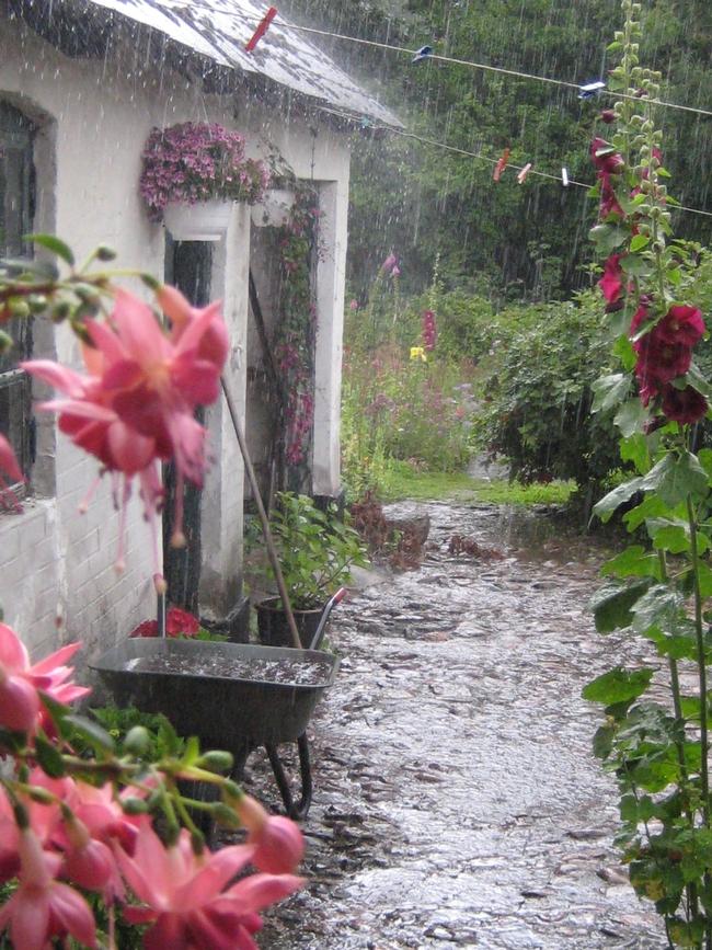 Ever elusive rain. (Pinterest)