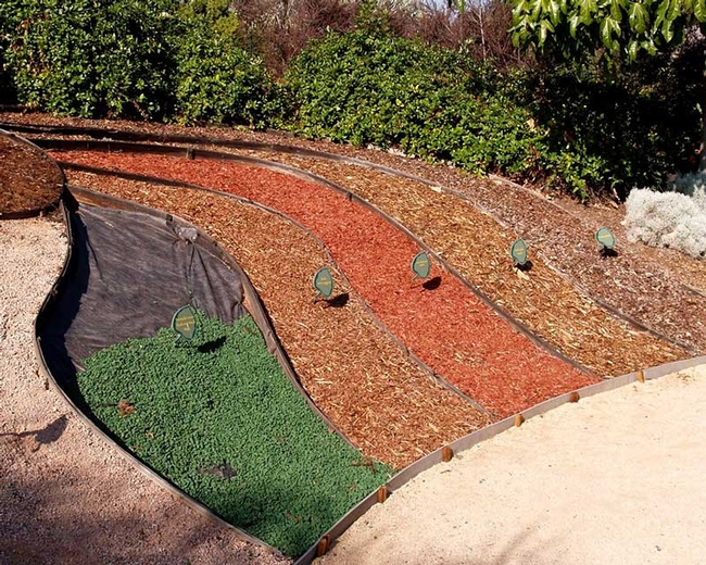 Mulch choices (The Water Conservation Garden)