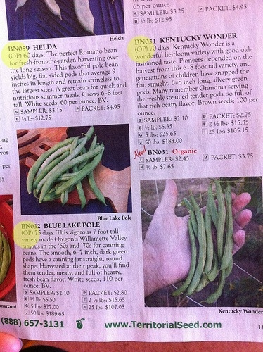 A page from seed catalog describing the plant's best features.(Territorial Seed)
