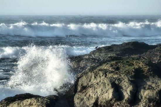 Mendocino coast (TripAdvisor)