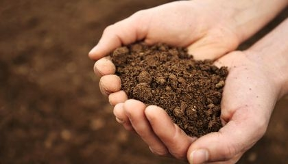 Start with the soil. (Smithsonian Magazine)