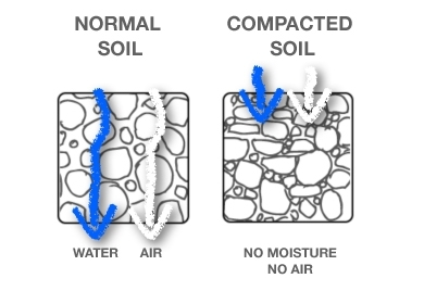 When walking on wet soil,  compaction is a serious risk.  (The Real Dirt Blog - ANR Blogs)
