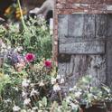 Let the garden soothe . . . (Annie Spratt)