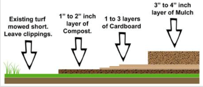 Layers for sheet mulching (Marin Master Gardeners)