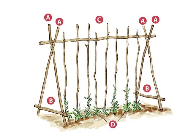 DIY garden trellis--commerical ones are available online (Garden Gate Magazine)