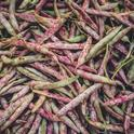 Beans (Unsplash, free-to-use-sounds)