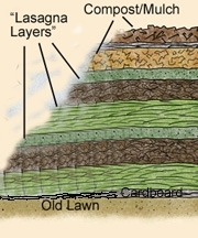 Lasagne method, sheet compost; find how-to link at the end of the article. (UC ANR)