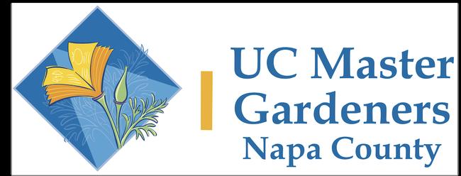 Napa MG banner