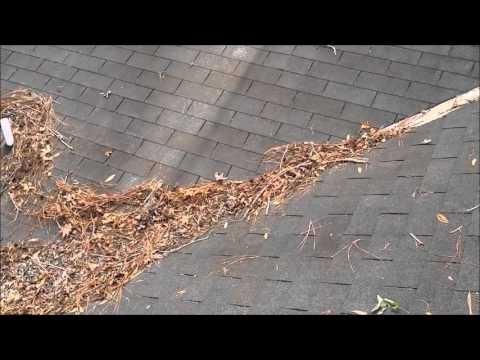 Roof leaf debris. (youtube.com)