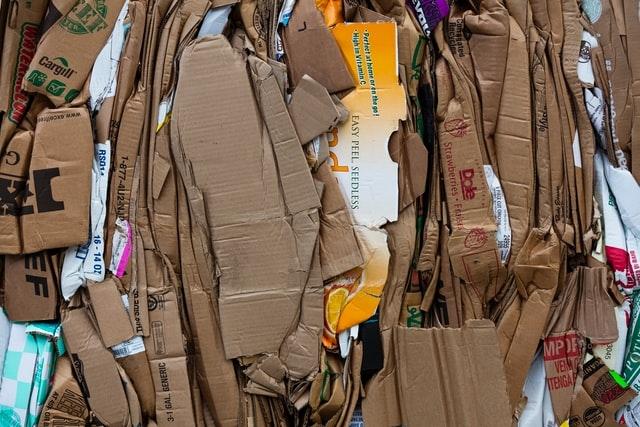 Cardboard in the garden. (Jon Moore Unsplash)