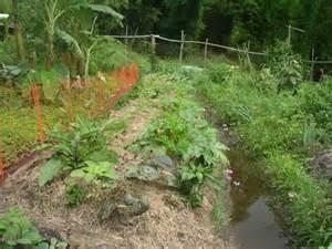Swale--keep a little rainwater in the garden. (ucanr.edu)