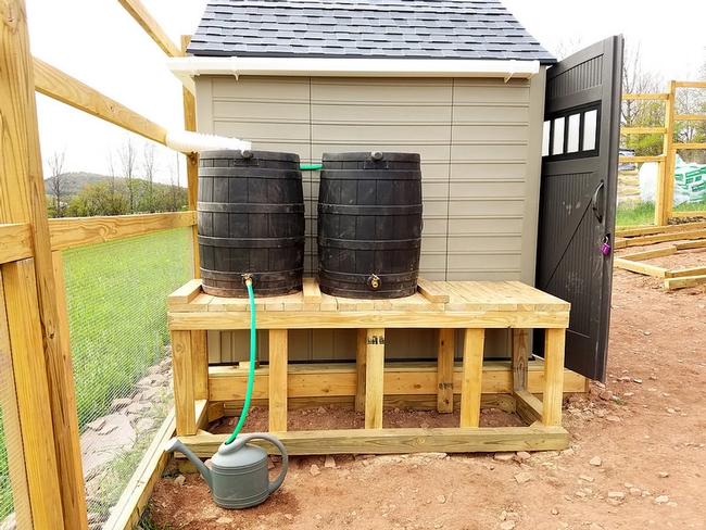 Another rainwater collection. (brooklynfarmgirl.com)
