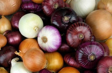 Colors of onion. (medicalnewstoday.com)