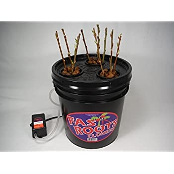 Root cloner, one of MANY kinds--we do not recommend any given product (amazon.com)