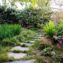 Shady garden (sunset.com)