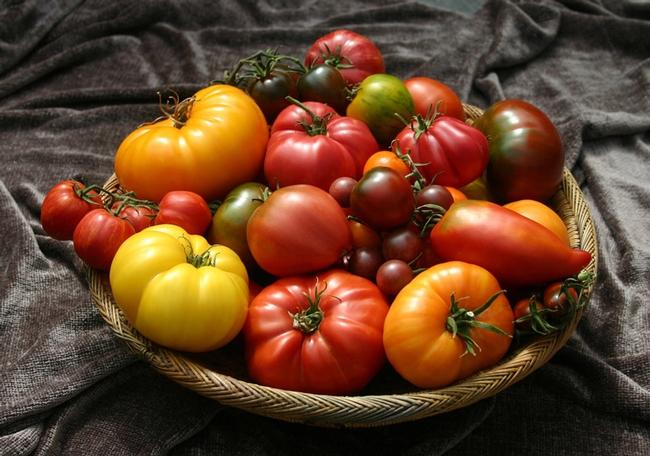Tomatoes. (borntogrow.net)
