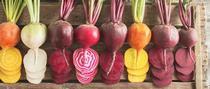 Beet variety. (johnnyseeds.com) for Napa Master Gardener Column Blog