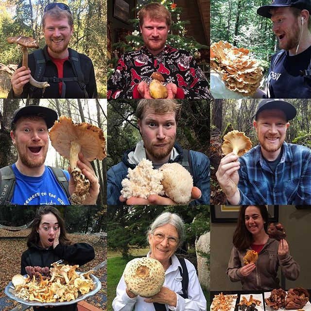 Fascinated by Fungi, Gordon Walker. (gordonwalkerconsulting.com)