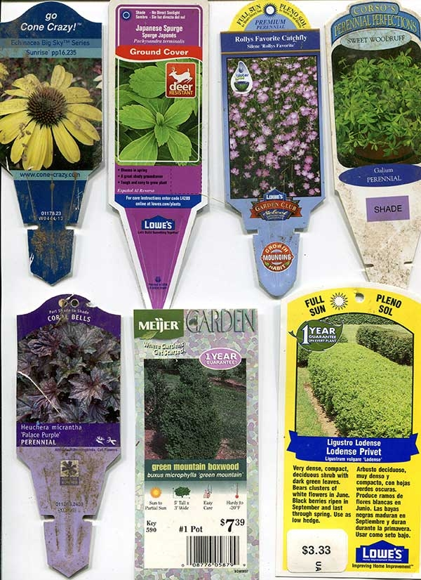 Plant labels provide information on growing conditions and height at maturity. (epicgardening.com)