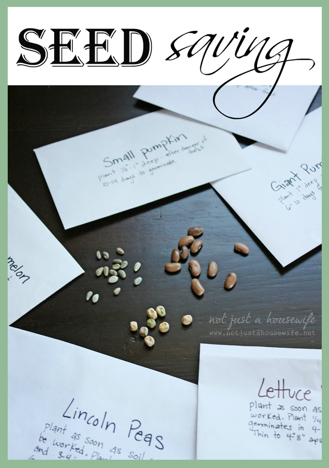 When saving seed, keep good records. (blog.homes.com)