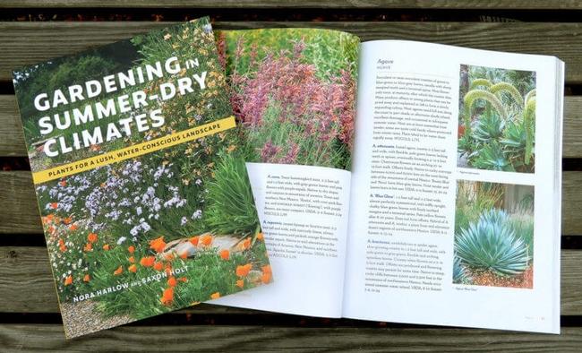 Gardening in Summer Dry Climates. (berkeleyhort.com)