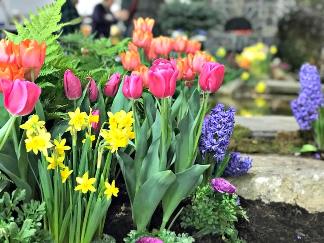 Let's make it spring-blossoming flowers! (turpinlandscapedesign.com)