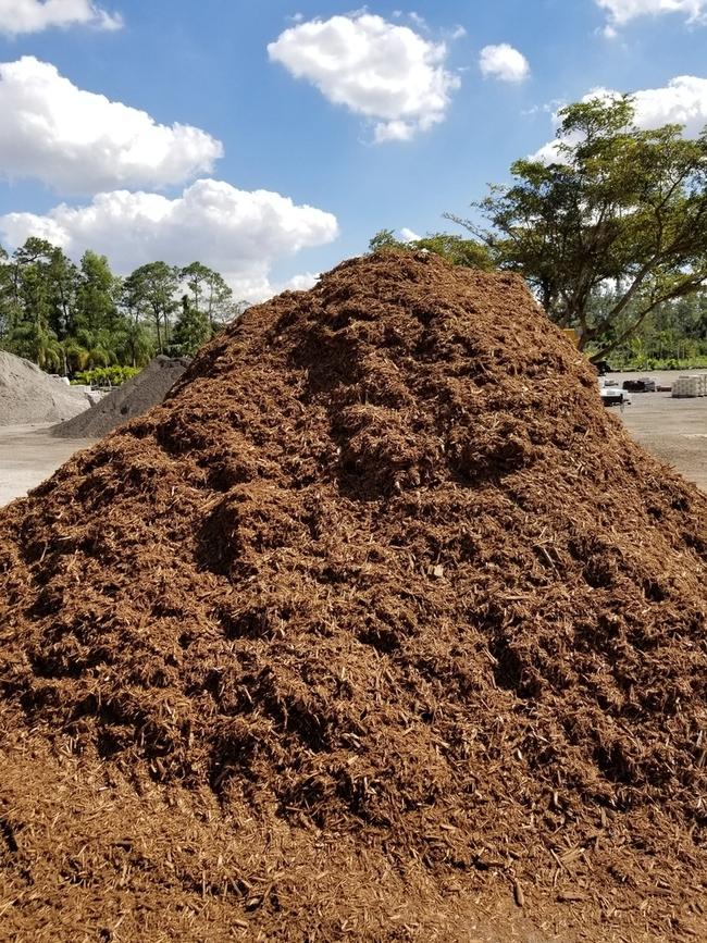Use quality mulch or compost. (aonestopgardenshop.com)