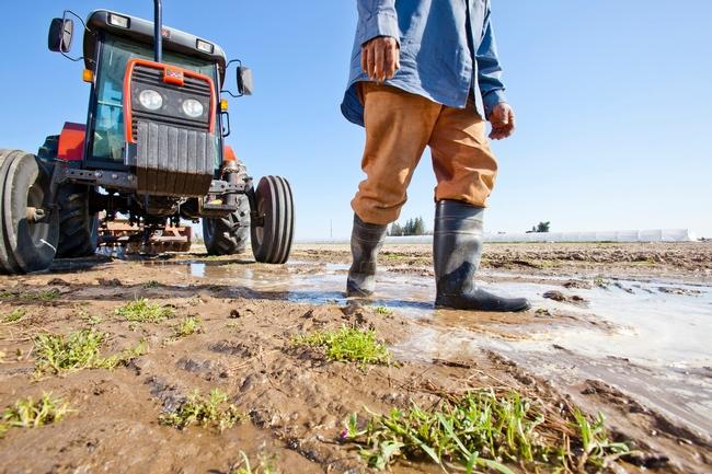 SGMA Farmworkers