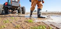 SGMA Farmworkers for Noticias Blog
