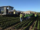 Learning about field packed lettuce in the Salinas Valley during the 2012 Postharvest Technology Short Course Field Tour, just one of the options for the Produce Professional Certificate Program.
