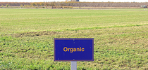 kearneyorganic for Research and Extension Center System Blog Blog