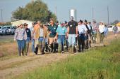 Participants head to the field (2016). Photo by Dana Dickey