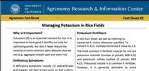 Fact Sheet #2: Managing Potassium in Rice Fields for UC Rice Blog Blog