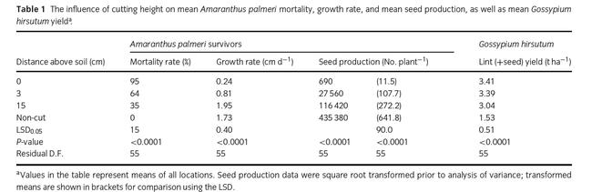 Palmer seed production following handweeding