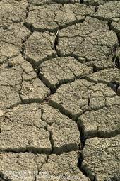 Deep cracks in soil due to drought conditions