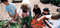 Students gardening for UC Master Gardeners- Diggin' it in SLO Blog