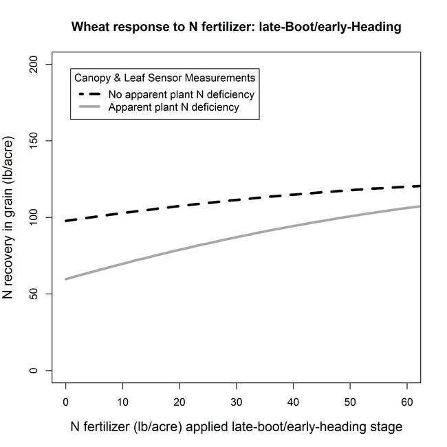 Boot N response Grain N