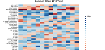 2018 Common Wheat Yield Heat Map for UC Small Grains Blog Blog