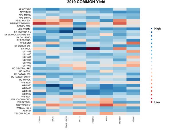 2019 Common Wheat Yield Heat Map