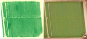 Multi-spectral (L) and visible spectrum (R) of field with N rich zones