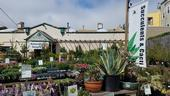 PlantRight is bringing back its annual Spring Retail Nursery Survey for 2020. Photo: ©PlantRight