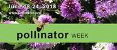 http://pollinator.org