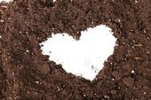 Brown soil with white heart pattern