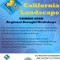 CA landscape