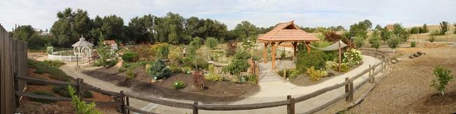 Demo Garden