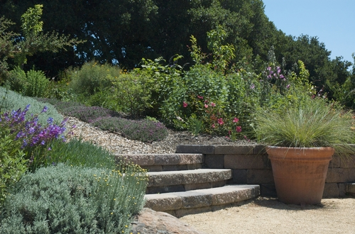 Sunday, June 6th In Petaluma And Cotati Tour The Backyards Of Six  Outstanding Master Gardeners And Learn How They All Met Challenges On Their  Sites With ...