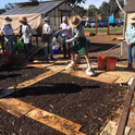 Inoculating compost extract